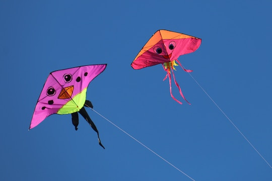 Image of two kites in the air