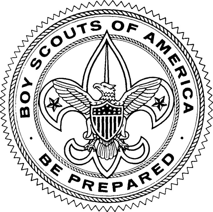 Image of Boy Scout Logo