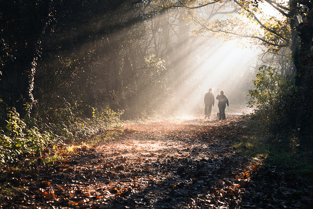 Image of two people walking in the woods