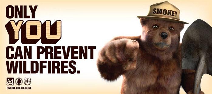 Image of Smokey the Bear