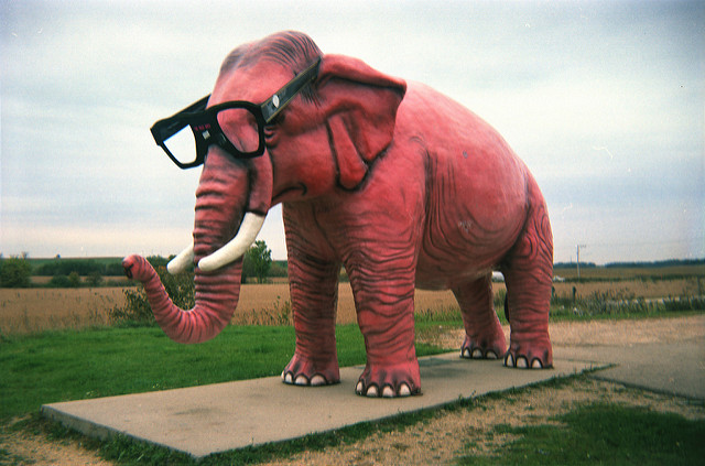 Image of pink elephant with glasses