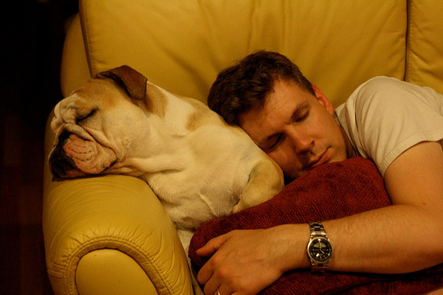 Image of a man sleeping on the sofa with his bulldog