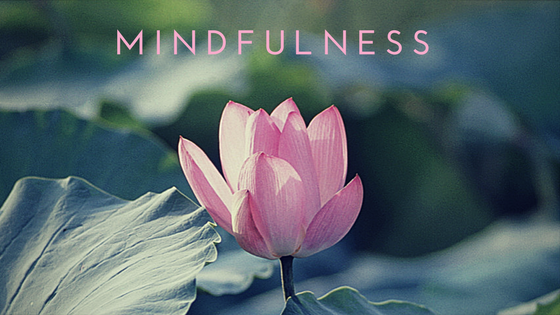"Image of a pink flower with ""Mindfulness"" above it"