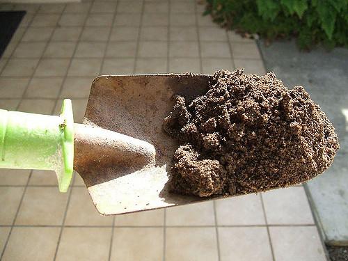 Image of a shovel full of dirt