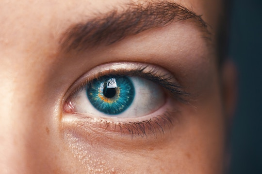 Image of an eye and eyebrow