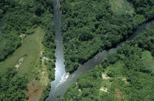 Aerial view of tropical rainforest with converging rivers, Guyana