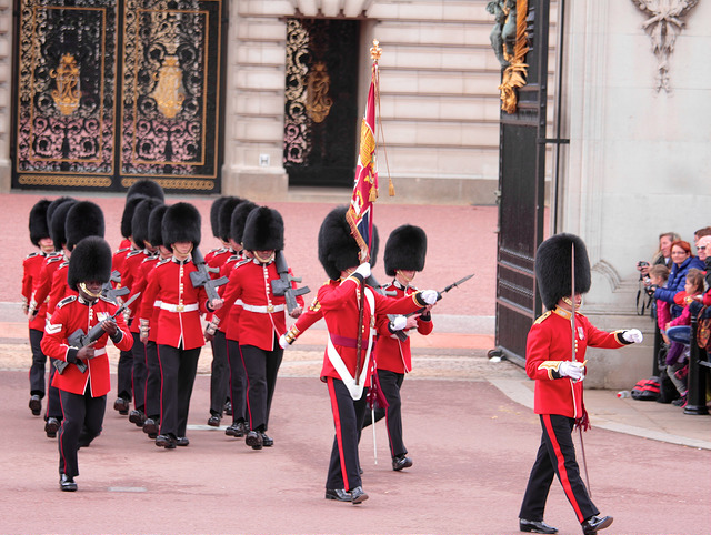 Image of Changing of the Guards at Buckingham Palace