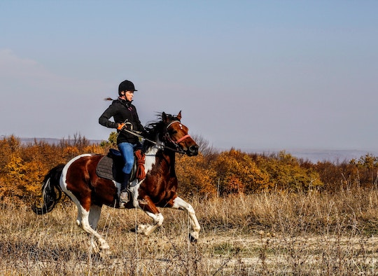 Image of a galloping horse and rider